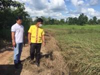 ลงพื้นที่สำรวจเกษตรกรผู้ประสบภัยน้ำท่วม